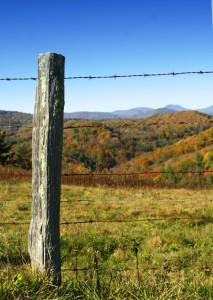 Wooden-fence-post